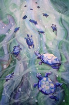 dream of the blue turtles