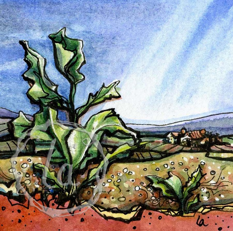 Down Home, a watercolor of a turnip green growing in the country side