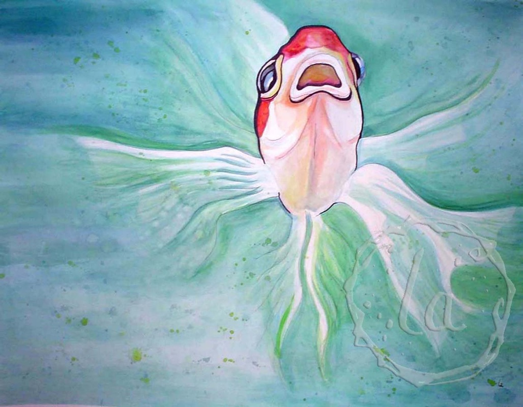 herb the white and red goldfish angel