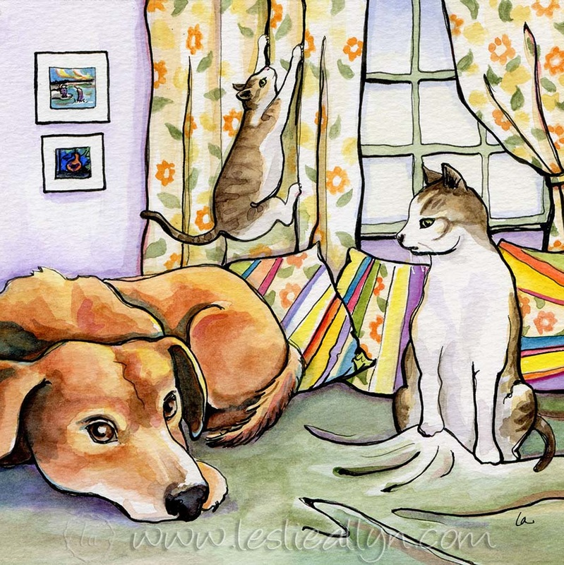 Homies, cats, dog, window, curtains, green