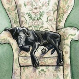 Watercolor by Leslie Allyn of black lab taking a nap in a patterned floral armchair