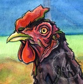 Earl by Leslie Allyn, a watercolor farm rooster chicken animal stares with big eyes in red, purple, and black