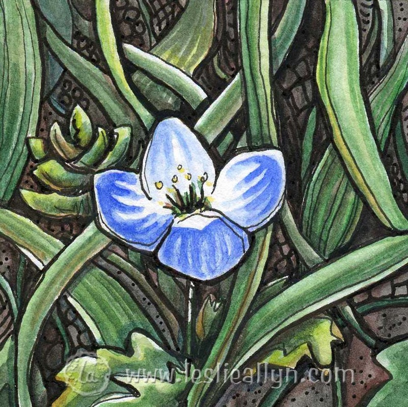 original watercolor of a tiny blue forget me not flower blooms in spring among the green grass