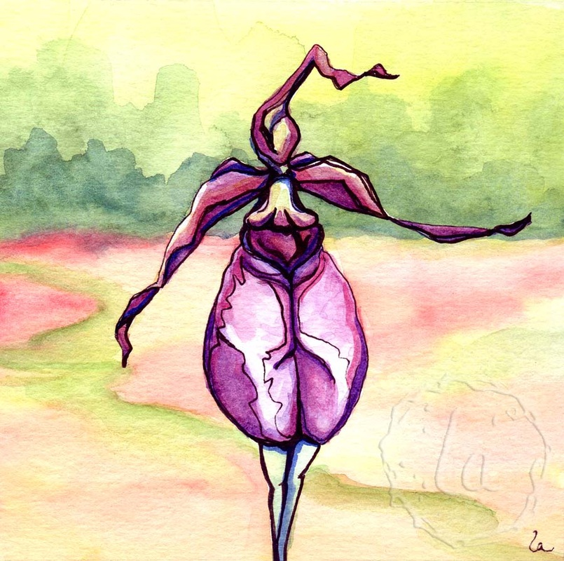 lady slipper orchid wild woman pink purple