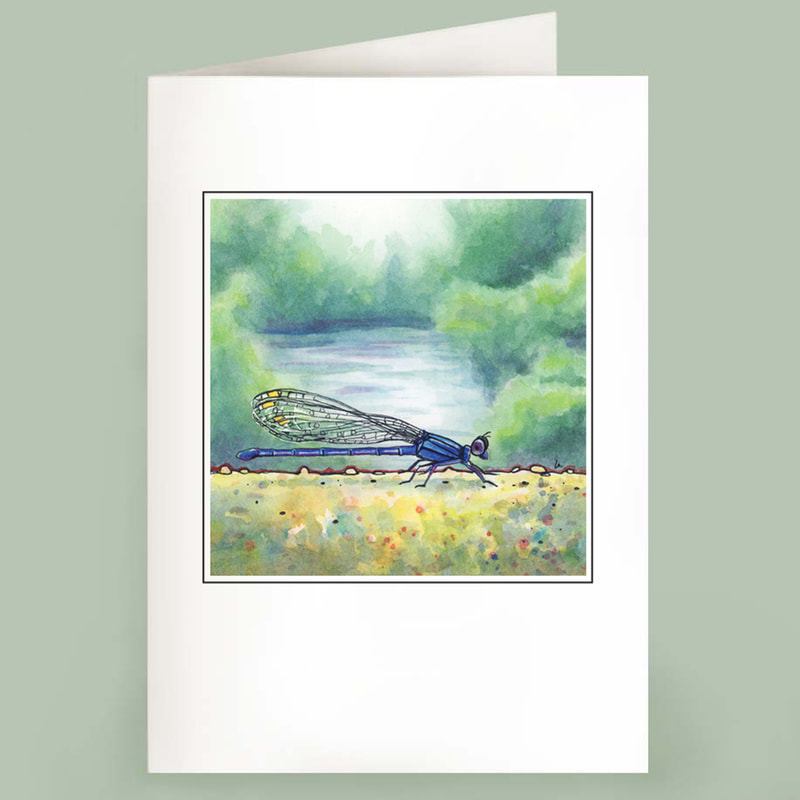 Damselfly on a bridge in summer watercolor note cards