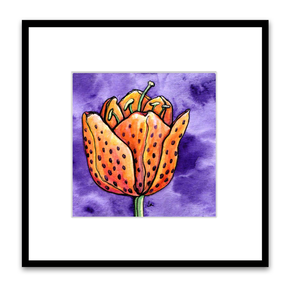orange tulip tiger lily on purple