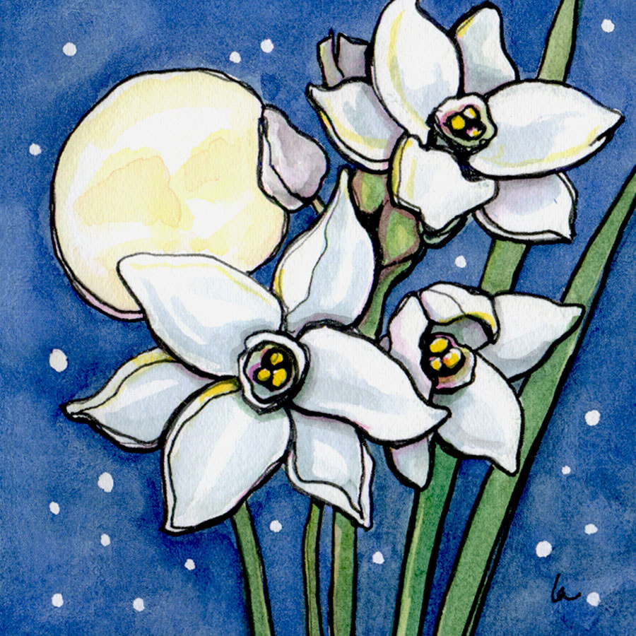 Paperwhite Moon - Flowers and Night - Leslie Allyn